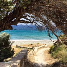 Une plage de Tinos