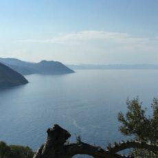 eubee-montochi-grece