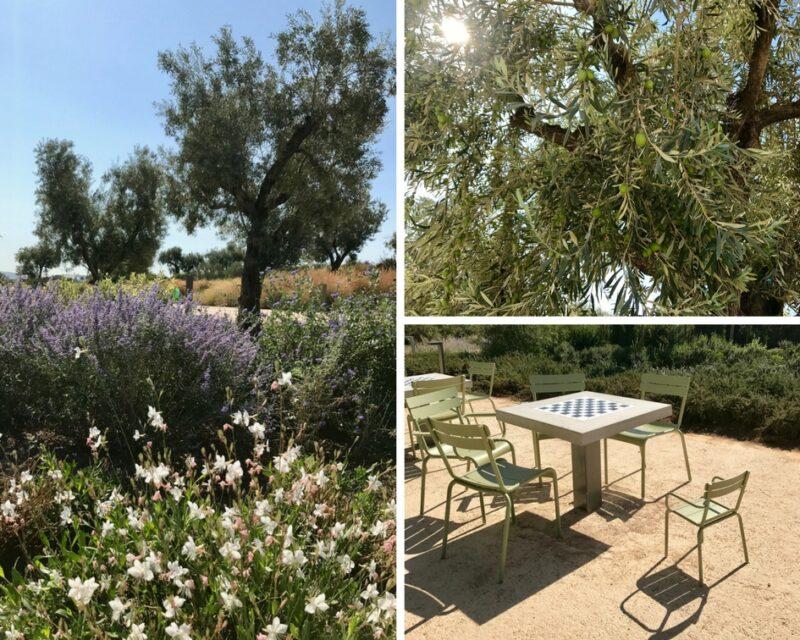 Espace vert à Athènes : le parc Stavros Niarchos