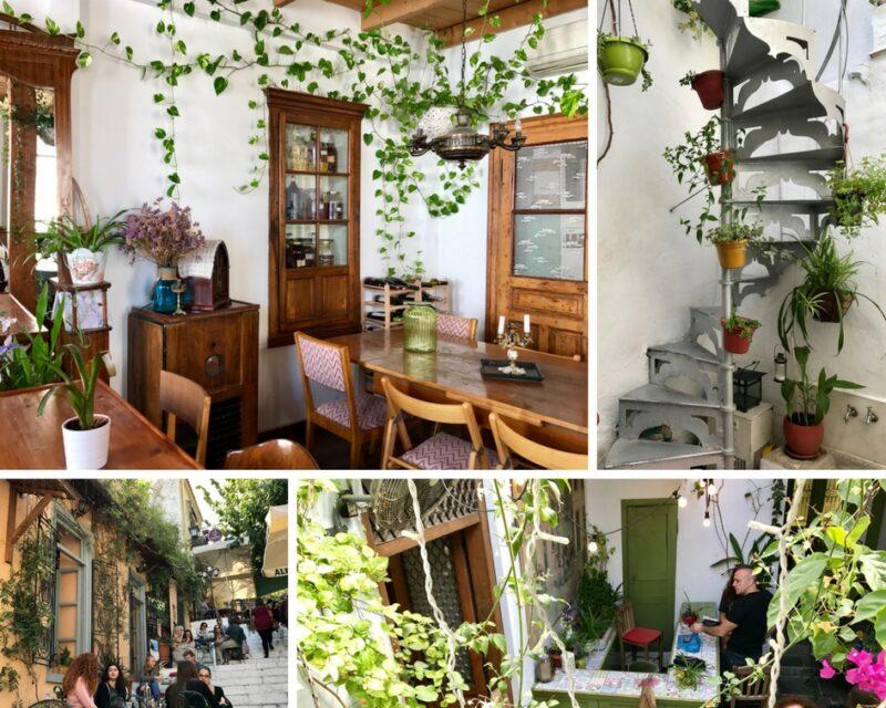 Les différentes ambiance du café Yiasemi à Plaka Athènes