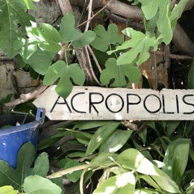 Visiter Athènes : l'Acropole et le Parthénon