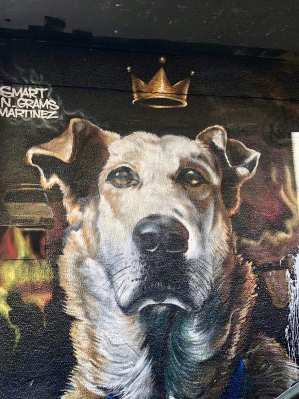 Le graffiti tous les chiens vont au paradis à Athènes
