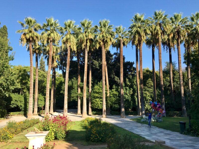 Un été à Athènes : s epromener dans le jardin national