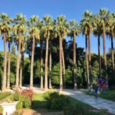 Le jardin national athenes