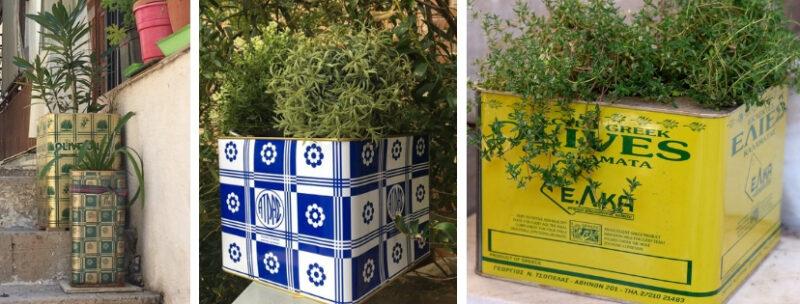 recyclage boites feta olives huile plantes athenes
