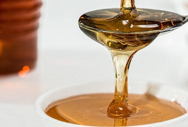 Le miel de thym grec bio