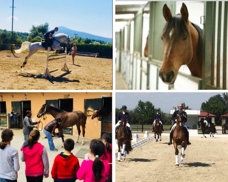 Centre équestre et balades à cheval à Athènes