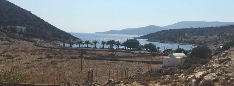 plage panermos naxos sud de l'ile plage avec palmiers