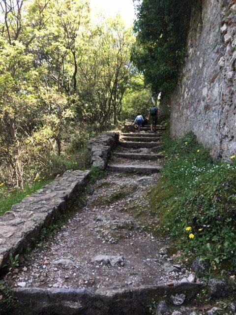 mystra randonnées chemin