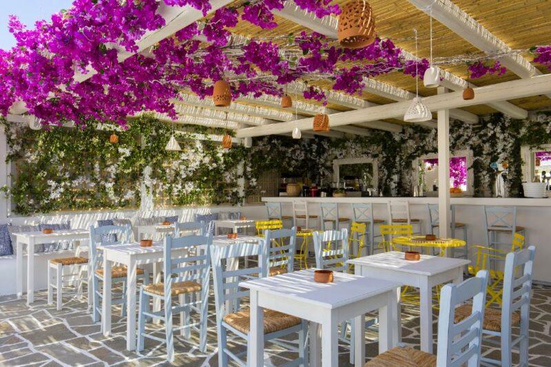 alexandros hotel athenes piscine plage rooftop terrasse