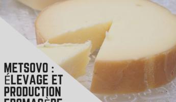 Le fromage fumé de Metsovo