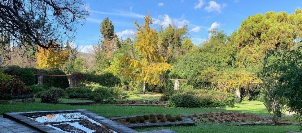 Athènes hors des sentiers battus : visite mythologie et plantes médicinales