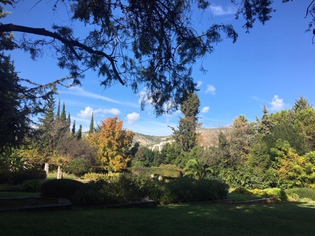 Athènes hors des sentiers battus : visite mythologie et plantes médicinales au jardin botanique d'Athènes
