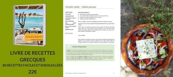 livre de recettes grecques cuisine grecque 80 recettes