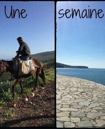 une semaine en grece : athenes, ile Hydra, peloponnese, mer, montagne, site antique, famille