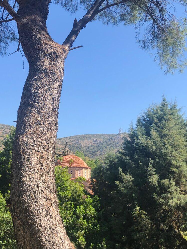 vue du monastere de Dafni