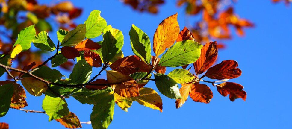 Que faire en Grèce en octobre - grèce en automne - se baigner en grèce en octobre - météo grece octobre