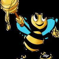 Vente de miel de Lesbos ( Bio)